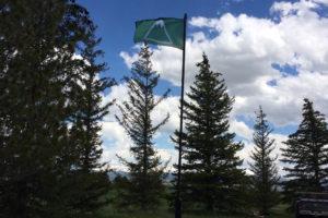 TOA Flag