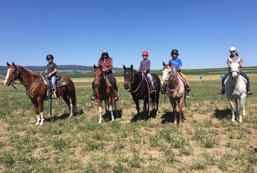 The TOA Herd